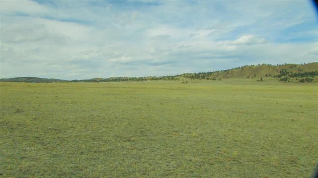 4685 Jackson Road, Hartsel, CO 80449 (MLS #S1009314) :: Colorado Real Estate Summit County, LLC
