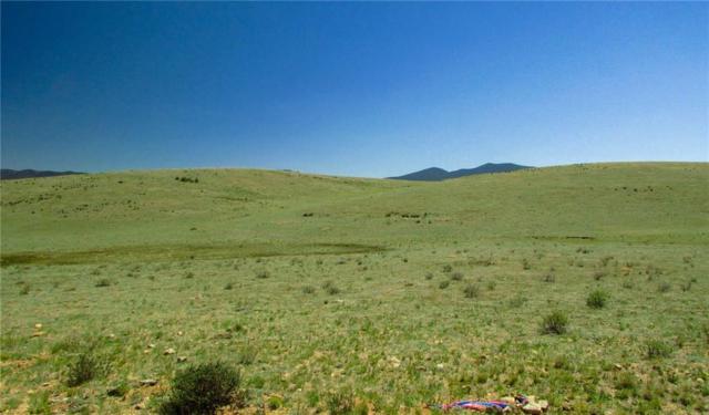 TBD South Park Meadows, Hartsel, CO 80449 (MLS #S1009433) :: Colorado Real Estate Summit County, LLC