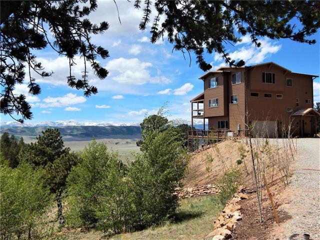 183 Ravens Way, Como, CO 80432 (MLS #S1009528) :: Resort Real Estate Experts