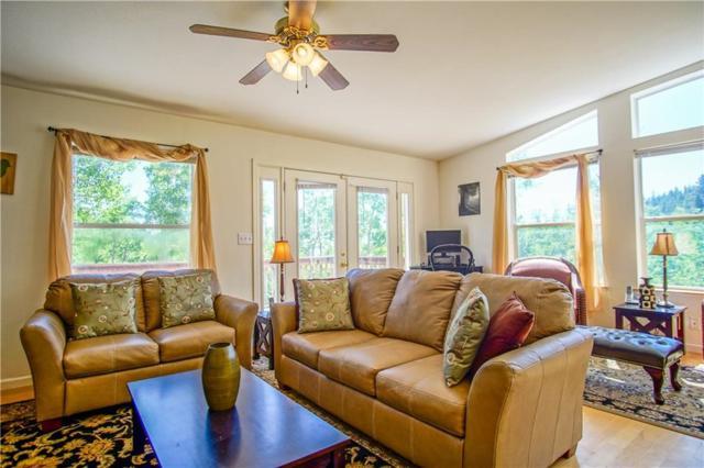 1588 High Creek Road, Fairplay, CO 80440 (MLS #S1009572) :: Resort Real Estate Experts