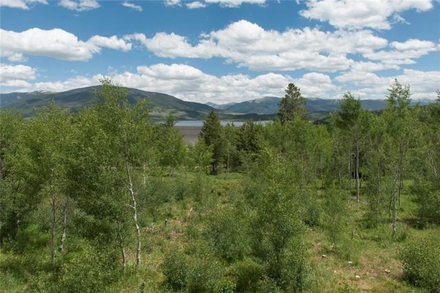 291 Lake View Drive, Silverthorne, CO 80498 (MLS #S1009694) :: Colorado Real Estate Summit County, LLC