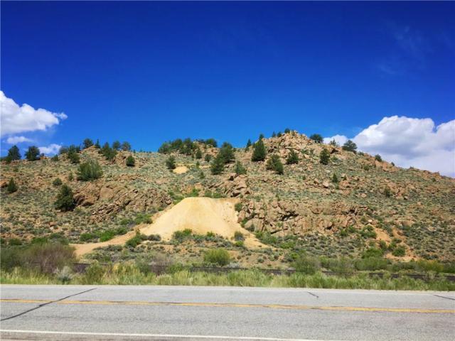 18829 Hudson, Granite, CO 81228 (MLS #S1009705) :: Resort Real Estate Experts