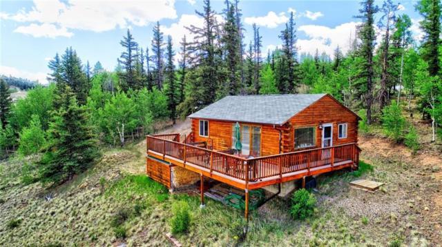237 Haida Lane, Como, CO 80432 (MLS #S1009759) :: Resort Real Estate Experts