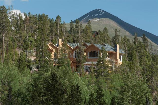 455 Highfield Trail, Breckenridge, CO 80424 (MLS #S1009800) :: Colorado Real Estate Summit County, LLC