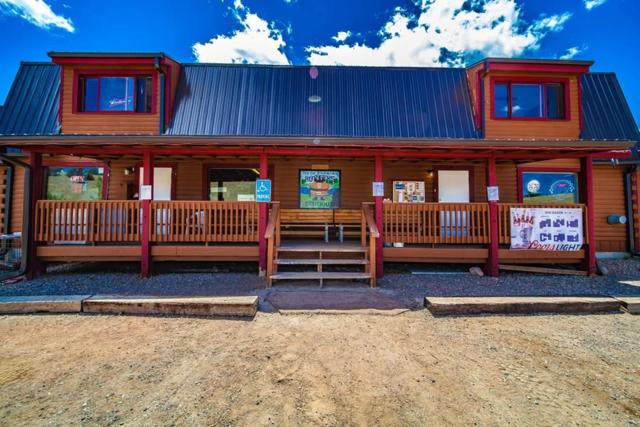 53 Stagestop Road -, Jefferson, CO 80456 (MLS #S1009813) :: Colorado Real Estate Summit County, LLC