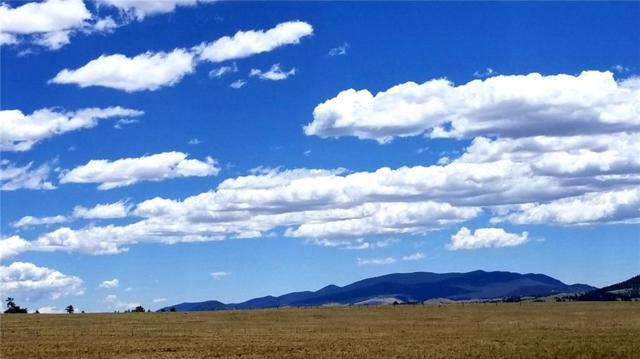 TBD Yazzi Drive, Hartsel, CO 80449 (MLS #S1009837) :: Colorado Real Estate Summit County, LLC