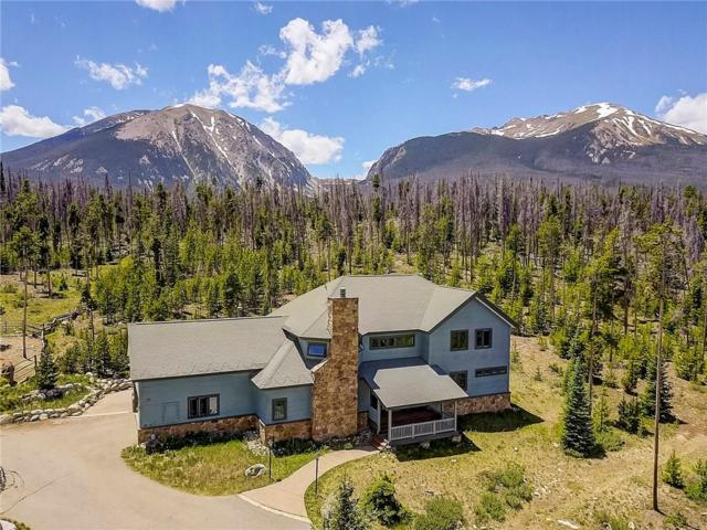 1228 Emerald Road, Silverthorne, CO 80498 (MLS #S1009894) :: Colorado Real Estate Summit County, LLC