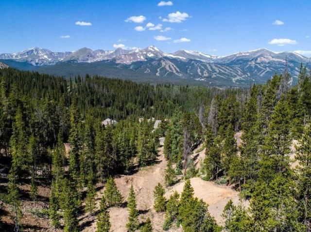 2745 Boreas Pass Road, Breckenridge, CO 80424 (MLS #S1009903) :: Colorado Real Estate Summit County, LLC