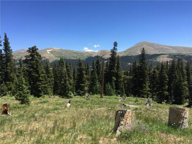 328 Pyrite Place, Alma, CO 80420 (MLS #S1009922) :: Resort Real Estate Experts