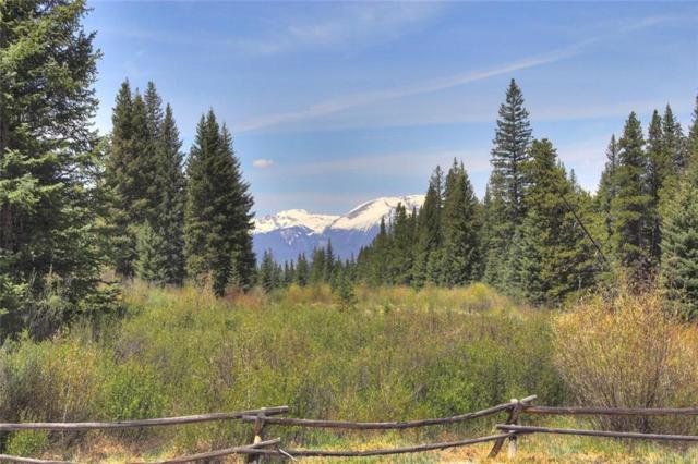 30 Wolf Rock Road, Keystone, CO 80435 (MLS #S1009923) :: Colorado Real Estate Summit County, LLC