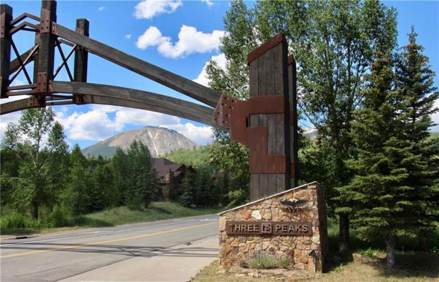313 Raven Golf Lane, Silverthorne, CO 80498 (MLS #S1009977) :: Colorado Real Estate Summit County, LLC