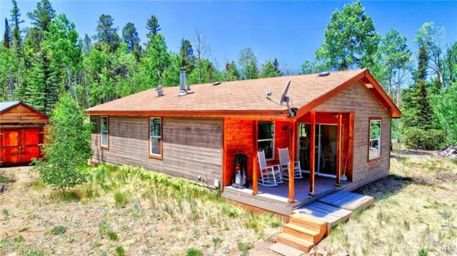 111 Mockingbird Circle, Como, CO 80432 (MLS #S1010010) :: Resort Real Estate Experts