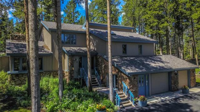 393 Blue Flag Circle, Breckenridge, CO 80424 (MLS #S1010019) :: Resort Real Estate Experts