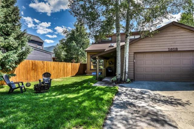 1612 N Chipmunk Lane N, Silverthorne, CO 80498 (MLS #S1010078) :: Colorado Real Estate Summit County, LLC
