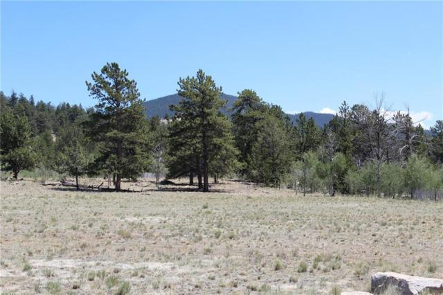 3790 Ute Trace, Hartsel, CO 80449 (MLS #S1010083) :: eXp Realty LLC - Resort eXperts