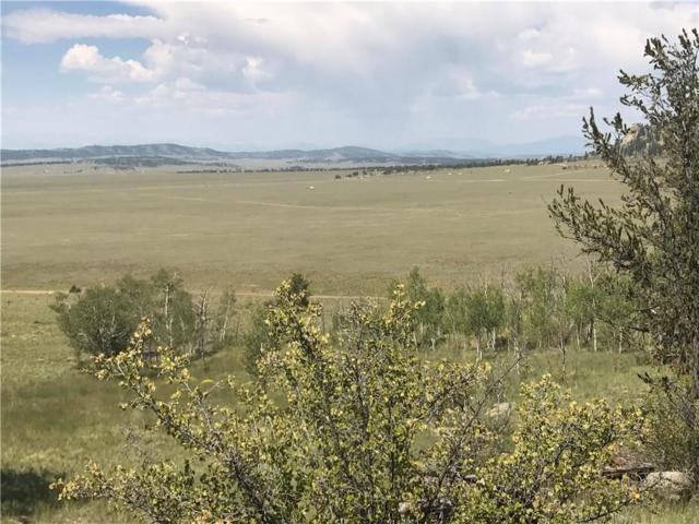 124 Grand Lane, Hartsel, CO 80449 (MLS #S1010138) :: Colorado Real Estate Summit County, LLC
