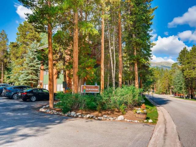 935 Columbine Road #306, Breckenridge, CO 80424 (MLS #S1010161) :: Colorado Real Estate Summit County, LLC
