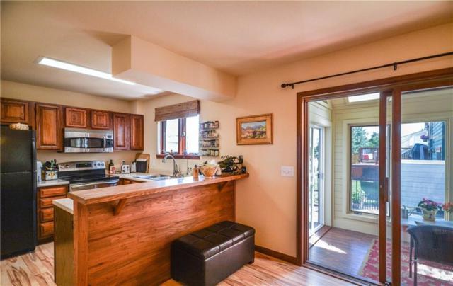 113 Badger Court, Silverthorne, CO 80498 (MLS #S1010165) :: Resort Real Estate Experts