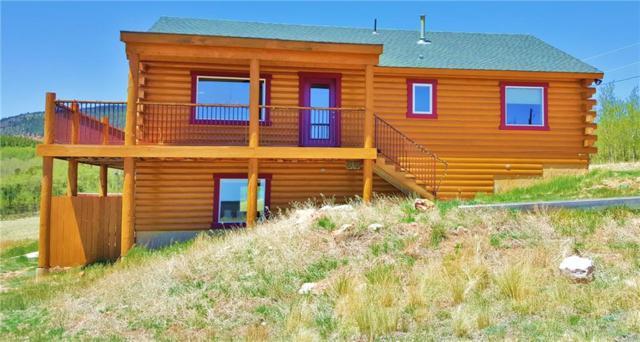 2473 High Creek Road, Fairplay, CO 80440 (MLS #S1010189) :: Resort Real Estate Experts