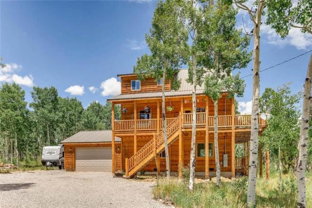 717 Vine Road, Fairplay, CO 80440 (MLS #S1010202) :: Resort Real Estate Experts