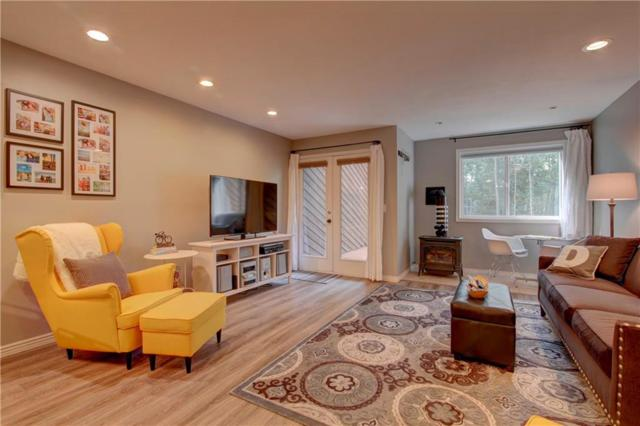 141 Alpine Drive D, Frisco, CO 80443 (MLS #S1010213) :: Colorado Real Estate Summit County, LLC