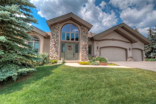 473 Ensign Drive, Dillon, CO 80435 (MLS #S1010214) :: Colorado Real Estate Summit County, LLC