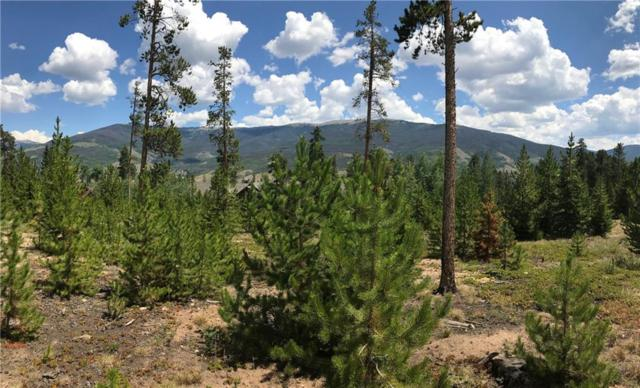 425 Two Cabins Drive, Silverthorne, CO 80498 (MLS #S1010243) :: Colorado Real Estate Summit County, LLC