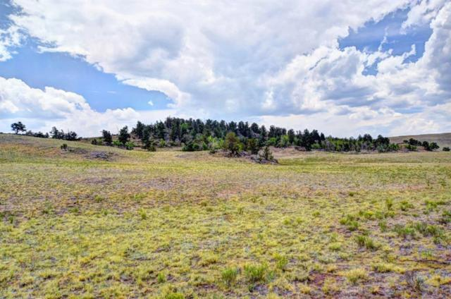 TBD Xtha Trail, Hartsel, CO 80449 (MLS #S1010274) :: Colorado Real Estate Summit County, LLC