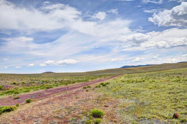 TBD Chicksaw Road, Hartsel, CO 80449 (MLS #S1010275) :: Colorado Real Estate Summit County, LLC