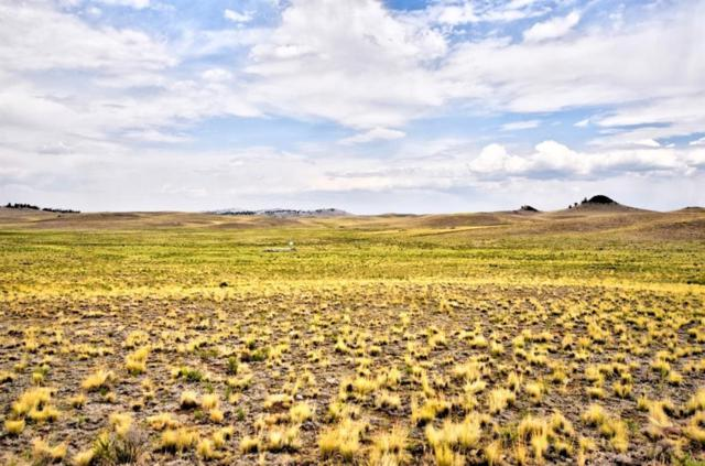 TBD Lenape Trail, Hartsel, CO 80449 (MLS #S1010276) :: Colorado Real Estate Summit County, LLC