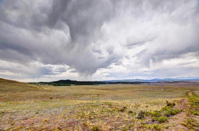 TBD Cherokee Trail, Hartsel, CO 80449 (MLS #S1010278) :: Colorado Real Estate Summit County, LLC