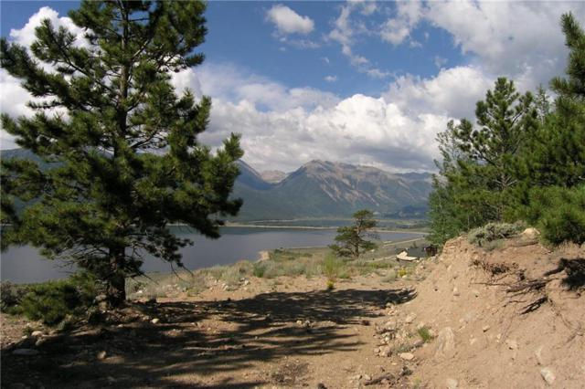 256 Twin Peaks Dr, Twin Lakes, CO 81251 (MLS #S1010295) :: Colorado Real Estate Summit County, LLC
