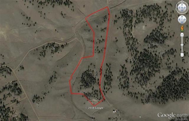 83 Victor Drive, Hartsel, CO 80449 (MLS #S1010350) :: Colorado Real Estate Summit County, LLC