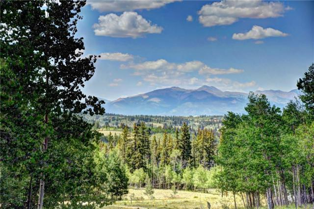369 Ute Trail, Como, CO 80432 (MLS #S1010402) :: Resort Real Estate Experts