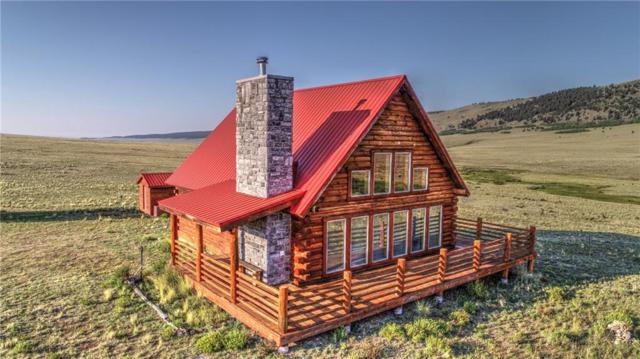 982 Center Road, Como, CO 80432 (MLS #S1010414) :: Colorado Real Estate Summit County, LLC