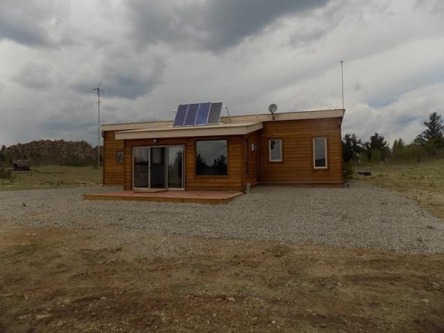 973 Breton Circle, Como, CO 80432 (MLS #S1010427) :: Resort Real Estate Experts