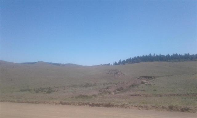 100 Elm Place, Hartsel, CO 80449 (MLS #S1010428) :: Colorado Real Estate Summit County, LLC