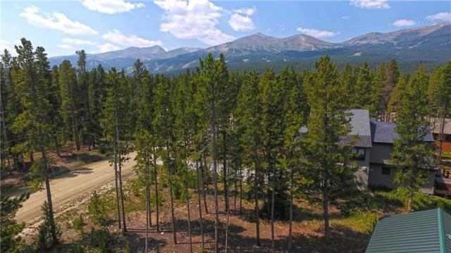 3764 Ski Hill Road, Breckenridge, CO 80424 (MLS #S1010452) :: Colorado Real Estate Summit County, LLC