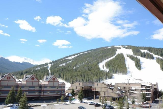 82 Wheeler Circle 316C-5, Copper Mountain, CO 80443 (MLS #S1010477) :: Colorado Real Estate Summit County, LLC