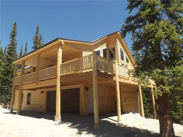28 Trails End, Fairplay, CO 80440 (MLS #S1010479) :: Colorado Real Estate Summit County, LLC