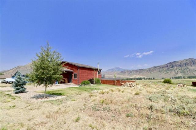 521 E Nevava, Other, CO 80451 (MLS #S1010504) :: Colorado Real Estate Summit County, LLC