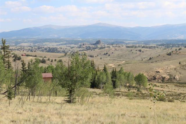 1015 Apache Trail, Como, CO 80432 (MLS #S1010515) :: Resort Real Estate Experts