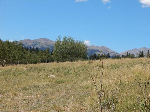 0 Selkirk Lane, Jefferson, CO 80456 (MLS #S1010540) :: Resort Real Estate Experts