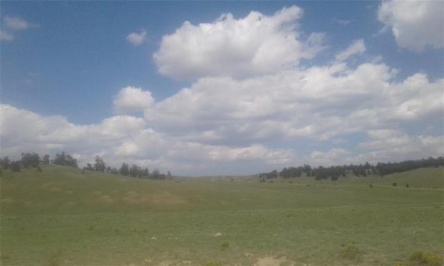 6298 Elkhorn Road, Hartsel, CO 80449 (MLS #S1010560) :: Colorado Real Estate Summit County, LLC