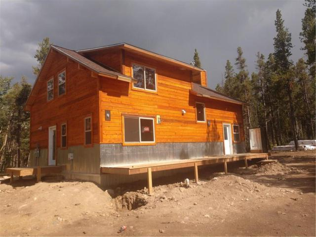 1022 Coil Drive, Fairplay, CO 80440 (MLS #S1010572) :: Resort Real Estate Experts