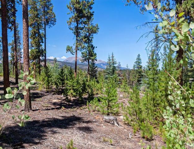 643 Highfield Trail, Breckenridge, CO 80424 (MLS #S1010637) :: Colorado Real Estate Summit County, LLC
