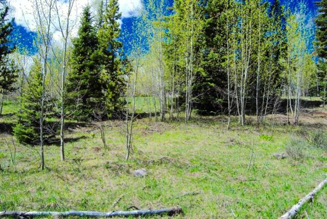 1445 Golden Eagle Road, Silverthorne, CO 80498 (MLS #S1010690) :: Colorado Real Estate Summit County, LLC