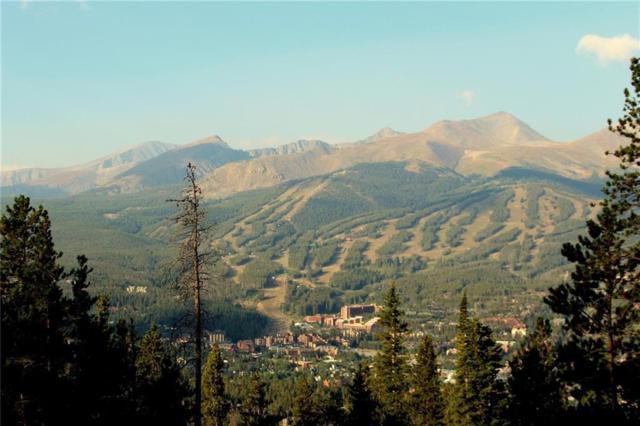 1030 Gold Run Gulch Road, Breckenridge, CO 80424 (MLS #S1010695) :: Colorado Real Estate Summit County, LLC