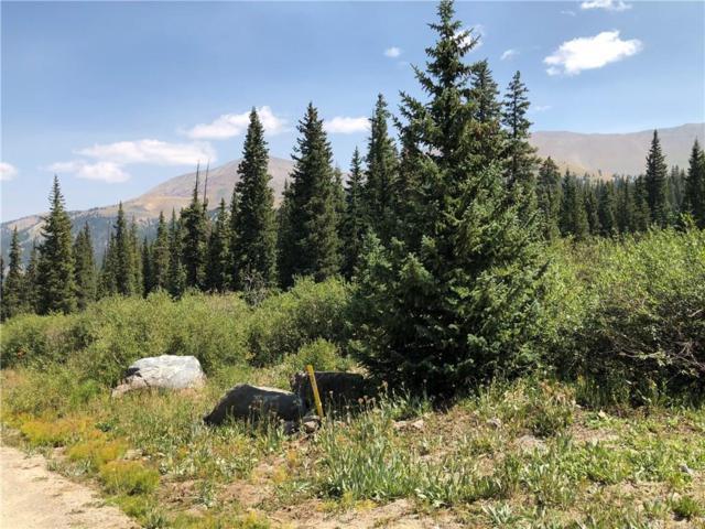 080 County Road 671, Breckenridge, CO 80424 (MLS #S1010698) :: Colorado Real Estate Summit County, LLC