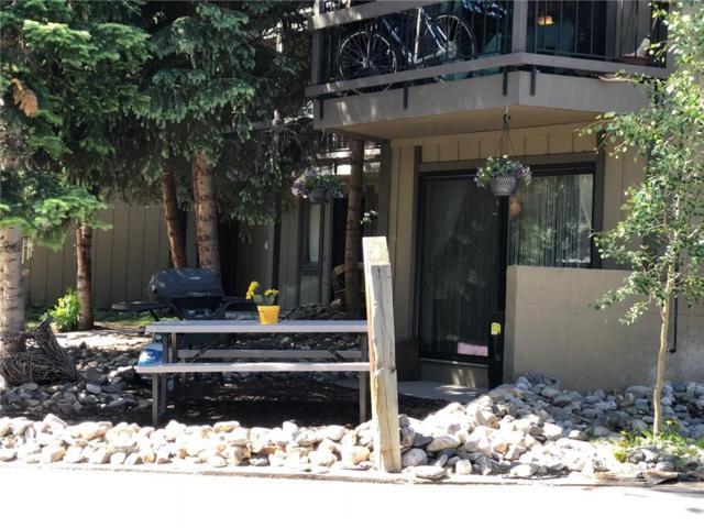 1075 Ski Hill Road #45, Breckenridge, CO 80424 (MLS #S1010715) :: Colorado Real Estate Summit County, LLC